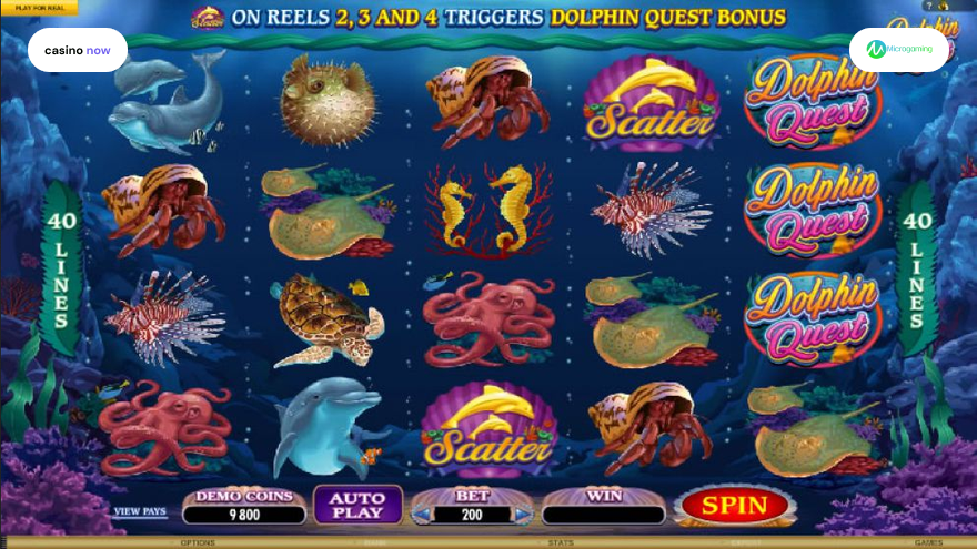 Online slot Dolphin Quest Microgaming screenshot